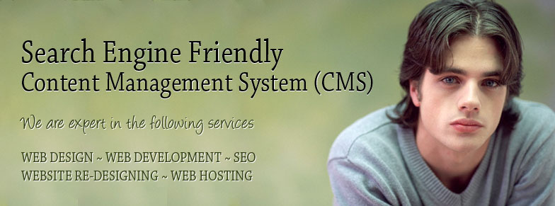 Search Engine Friendly Content Management System (CMS)